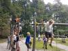 anski-vrh-drevesna-hic5a1ica-mestni-park-17-9-5
