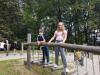 anski-vrh-drevesna-hic5a1ica-mestni-park-17-9-8